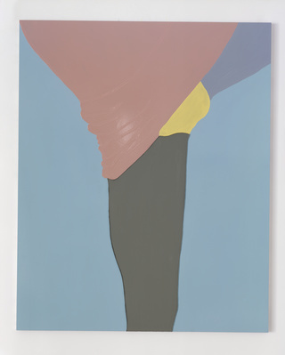 American Tan XVII (Gloss), 2006-07 By Gary Hume