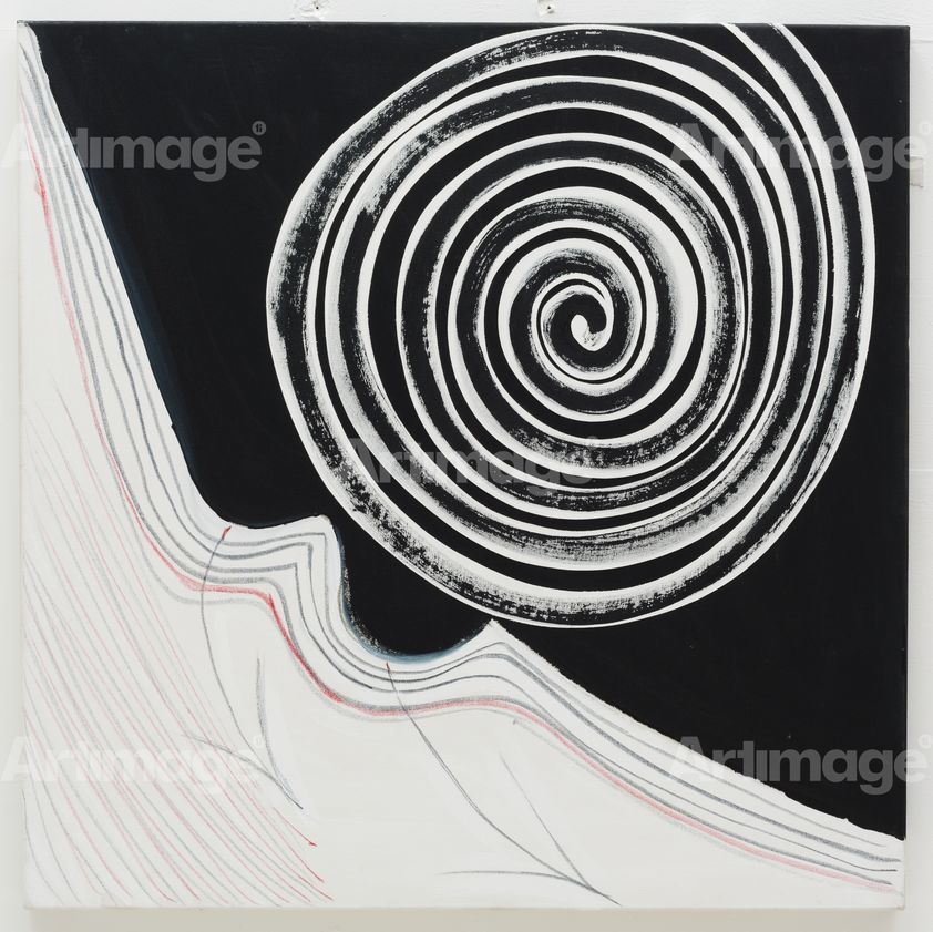Enlarged version of Black and White Spiral, 2003