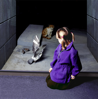Cat and Pigeon, Museum of Childhood, Edinburgh, 2000 By Wendy McMurdo