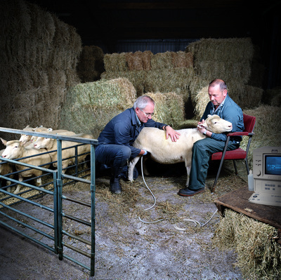 Anaesthetist John Bracken and Farm Research Assistant Dougla...