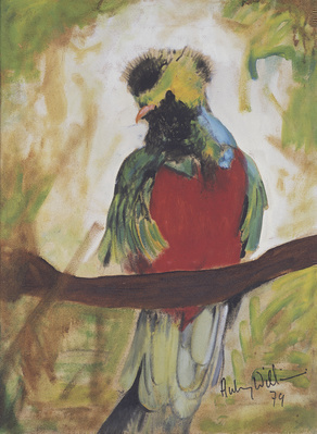 Resplendent Quetzal, 1979  By Aubrey Williams