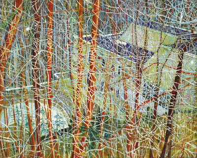 The Architect's Home in the Ravine, 1991 By Peter Doig