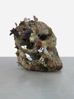 Skull of a Cyclops By Damien Hirst