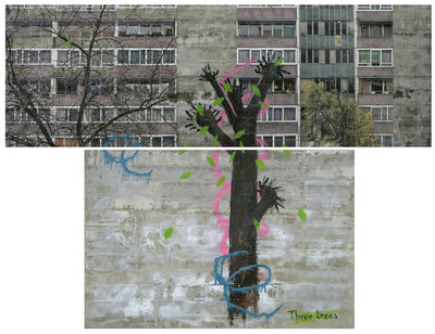 Three Trees, 2010-11