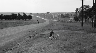 The Road to Mvezo, 2007-2008