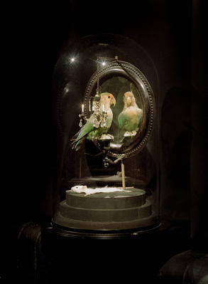 Lovebird, 2005 By Polly Morgan