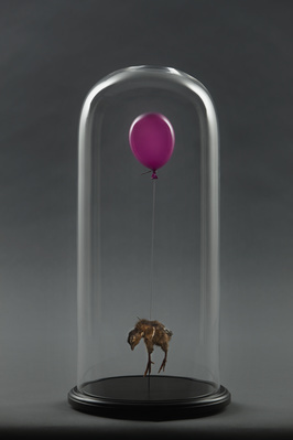 Still Birth (Purple), 2010