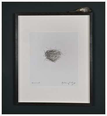 Dunnock, 2012 By Polly Morgan