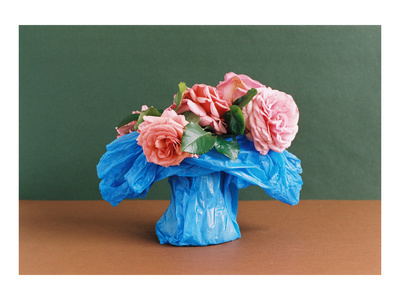 Pink Roses in A Blue Bag (i), 2007 By Georgie Hopton