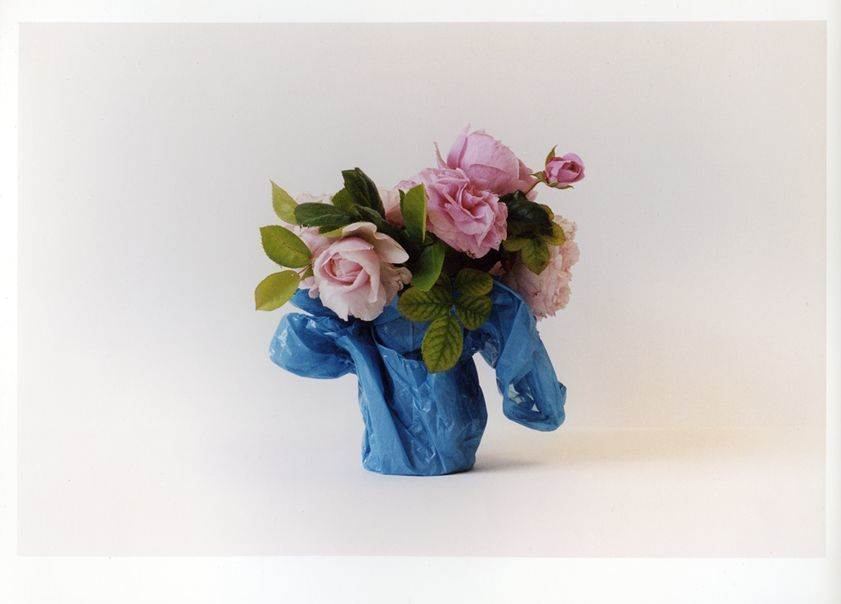Still Life in Blue & Pink, 2003