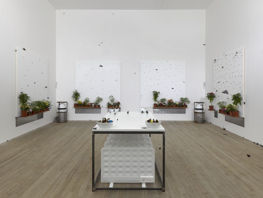 In & Out of Love (White Paintings & Live Butterflies), 1991 - Installed at  Tate Modern, 2012 : Damien Hirst : Artimage