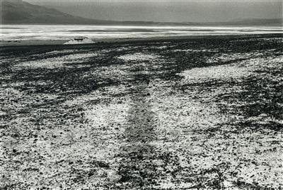 Sea Level Waterline, 1982 By Richard Long