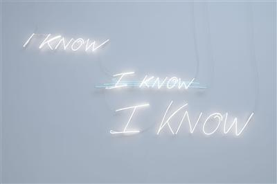 I KNOW I KNOW I KNOW, 2007 By Tracey Emin