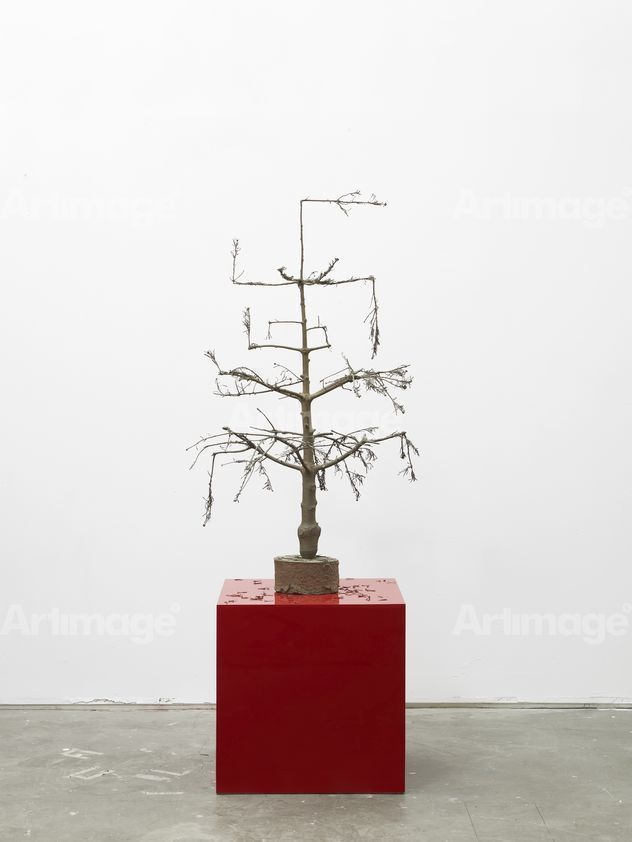 Enlarged version of The Bad Little Christmas Tree, 2009