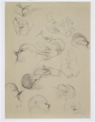 Studies of the Artist's Child, 1946 By Henry Moore