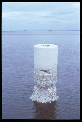Two Sisters, 1998 (installation view, Minerva Basin, Hull) By Anya Gallaccio