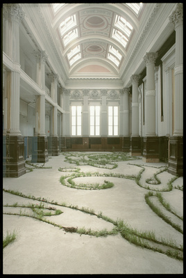Glaschu, 1999 (installation view, Lanarkshire House, Glasgow... By Anya Gallaccio
